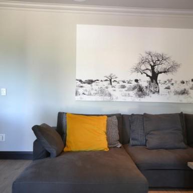 nieuwoudt-achitects-residence-3-gauteng-14
