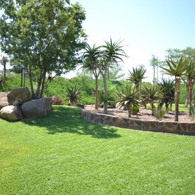 nieuwoudt-achitects-residence-3-gauteng-4