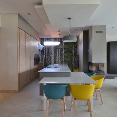 nieuwoudt-architects-residence-2-gauteng-7